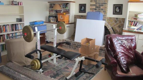basement remodel 001