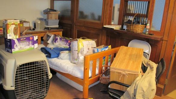 basement remodel 005